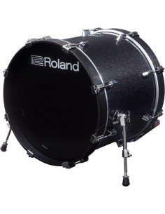 Roland KD-200-MS